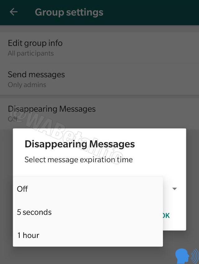 WhatsApp-Kaybolan-Mesaj